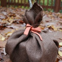TP and brown burlap pumpkin