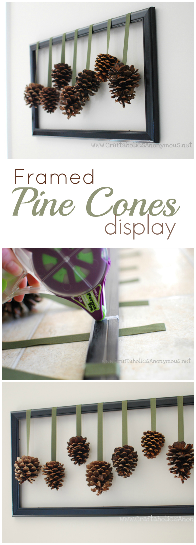 framed pine cones display. Great way to use those pine cones and create cheap home decor!
