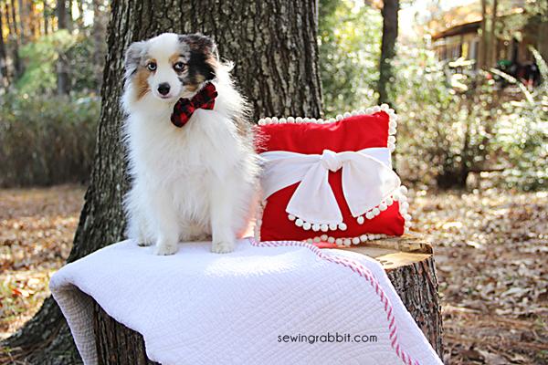 Christmas Pom pom Pillow