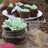 Succulent Terrarium Cupcakes!