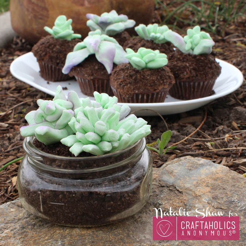 edible terrariums succulents marshmallow fondant cupcake dirt cups cake wedding decor mason jar dessert craftaholics anon (20)