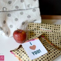lunch bags 10