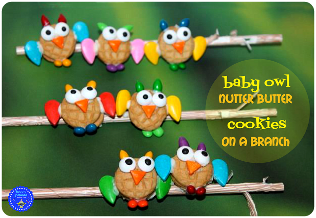 10-baby-owl-nutter-butter-cookies-on-a-straw-branch-title-hooplapalooza