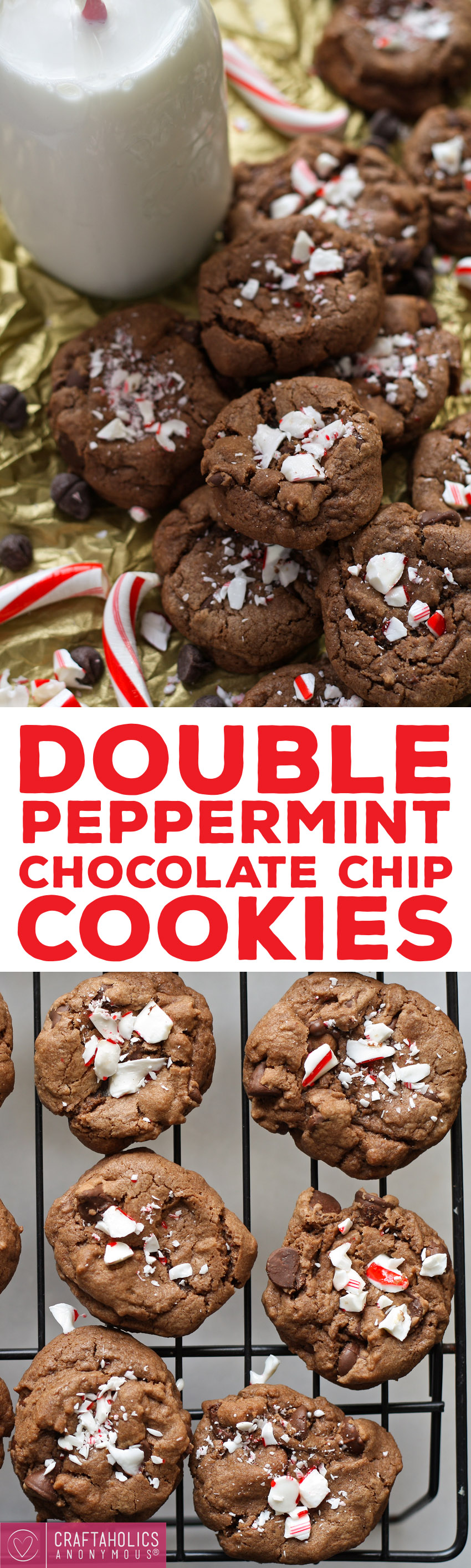 Double Peppermint Chocolate Chip Cookies - perfect for Christmas cookie season!