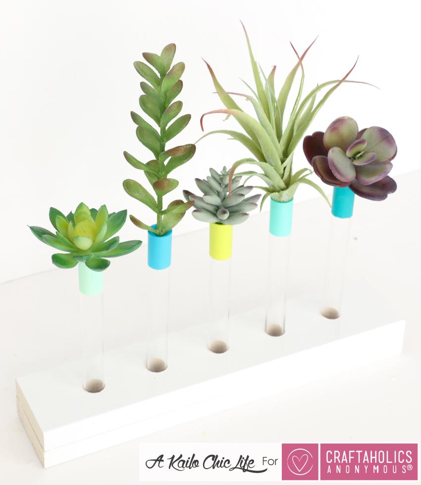 succulent vases