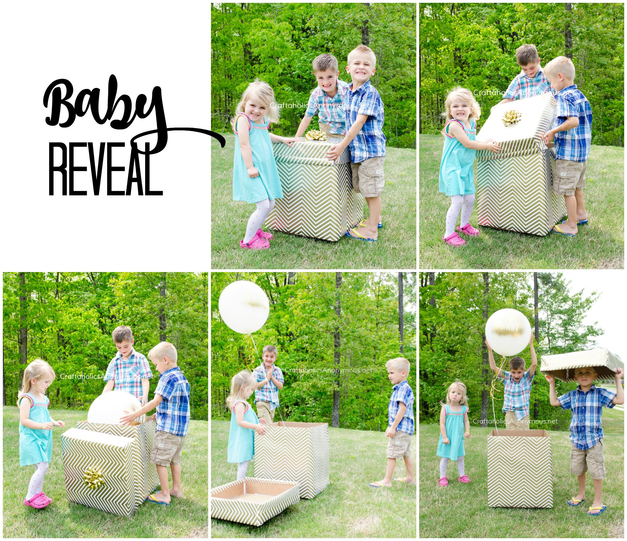 Baby Reveal Announcement idea