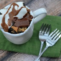 25 Mug Cake Recipes