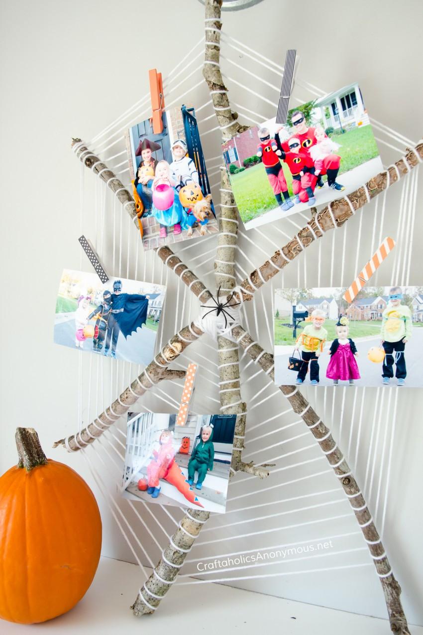 halloween-spider-photo-display